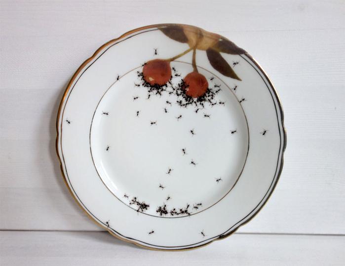 посуда с муравьями Эвелин Баклоу 5 (700x540, 292Kb)
