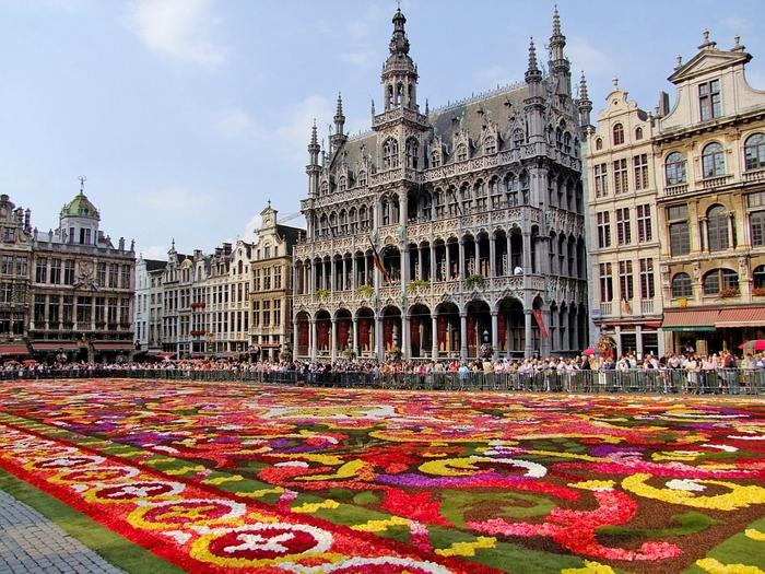 цветочный ковер брюссель фото 2 (700x525, 372Kb)