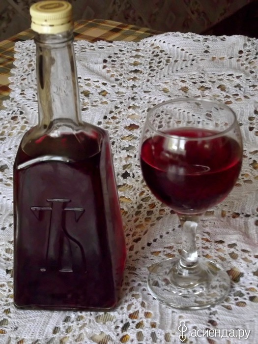 Как сделать вино с винограда лидия в домашних условиях