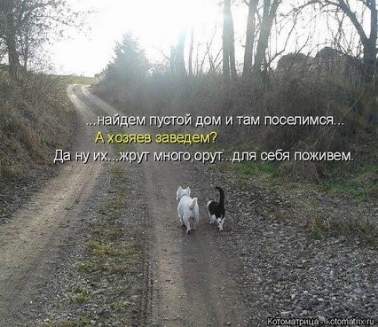 116569702_image (426x369, 92Kb)