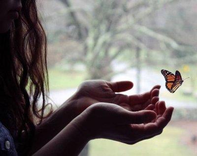 бабочка (400x316, 20Kb)