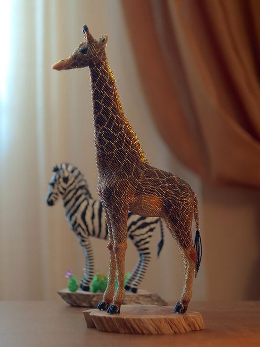 жираф-с-зеброю (525x700, 310Kb)