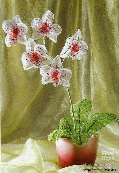 орхидея из бисера, как сделать орхидею из бисера Хьюго Пьюго,