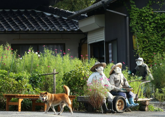 деревня пугал в японии фото 5 (700x498, 380Kb)