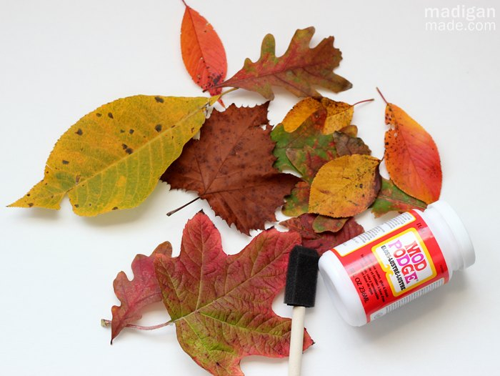 how-to-seal-fall-leaves-with-decoupage-00 (700x526, 256Kb)