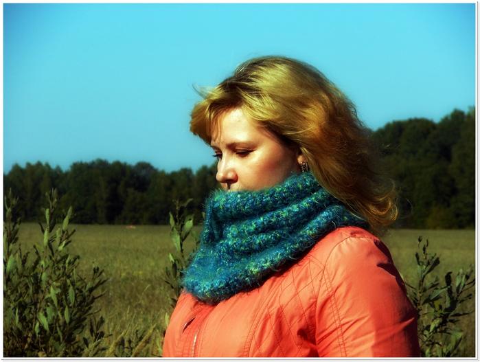 шарфы сентрябрь 2014009 (700x527, 390Kb)