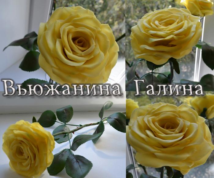 Моя работа - тонированная роза (700x583, 439Kb)