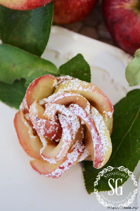 PUFF-PASTRY-APPLE-ROSETTES-delicous-stoneg (463x700, 214Kb)