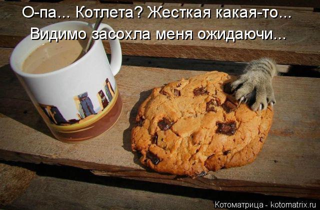 kotomatritsa_G (640x420, 254Kb)
