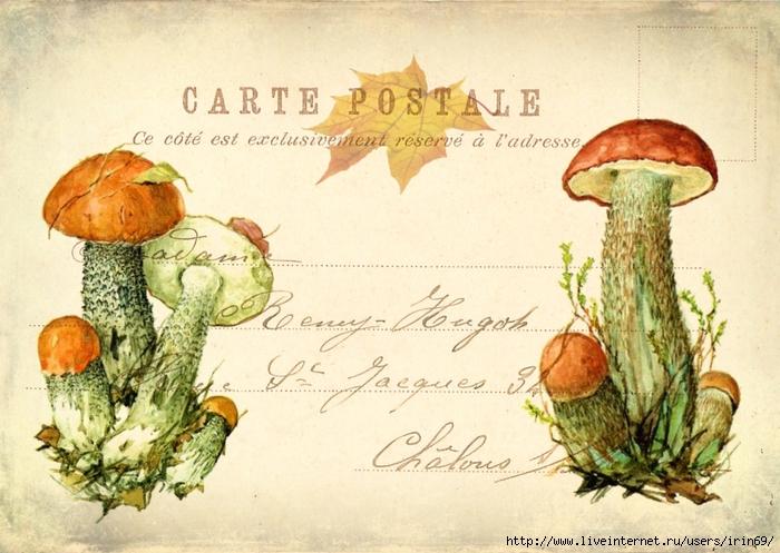 осенние открытки фото