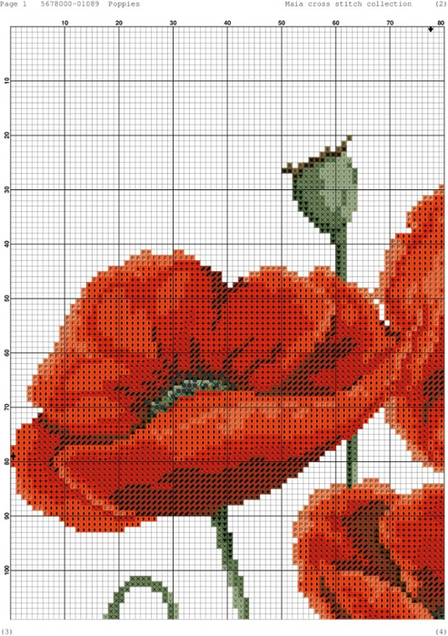Poppies-001-723x1024 (493x700, 426Kb)