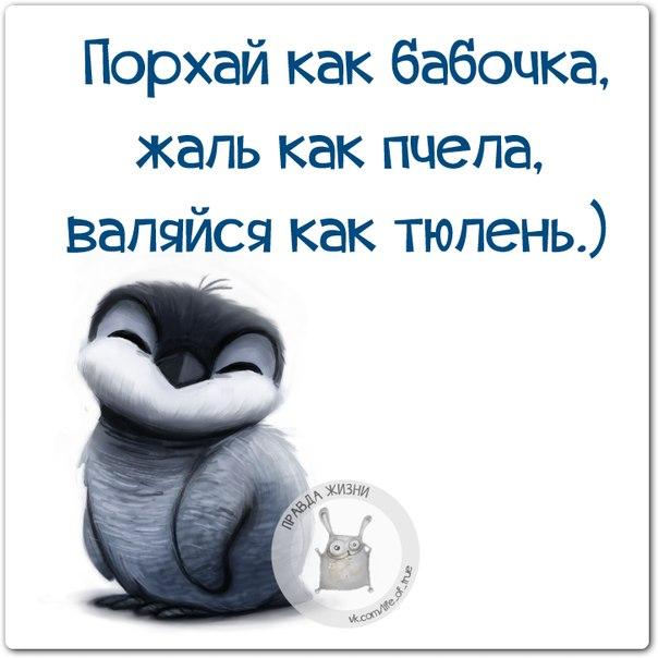 1411671126_frazki-23 (604x604, 174Kb)
