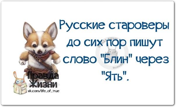 1411671206_frazki-8 (604x367, 138Kb)