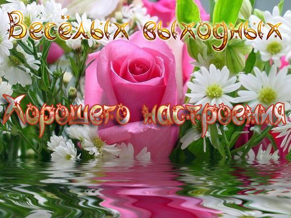 http://img1.liveinternet.ru/images/attach/c/11/116/788/116788687_0a32ba825131a20b2fea0cd0b854b04f.jpg