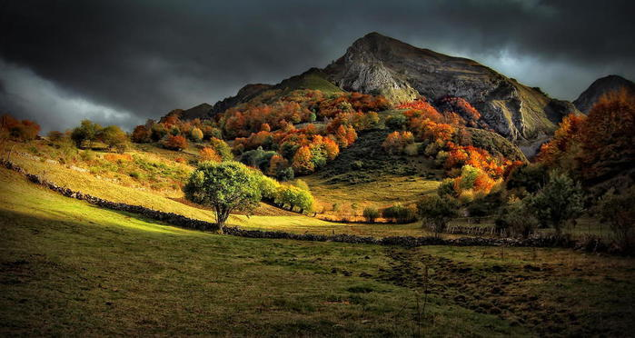 Fall_Colors_23 (700x372, 56Kb)