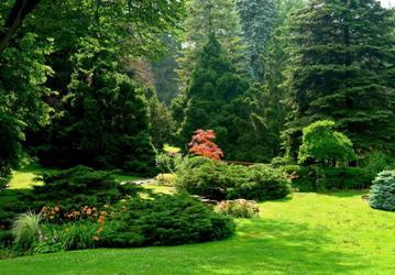 garden (359x250, 25Kb)
