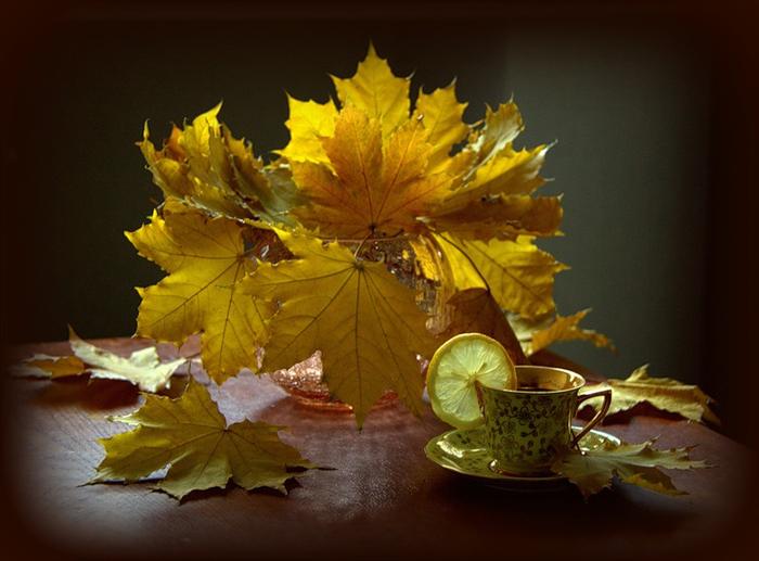 листья1 (700x517, 324Kb)