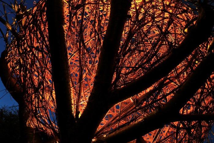 Домик из лозы на дереве