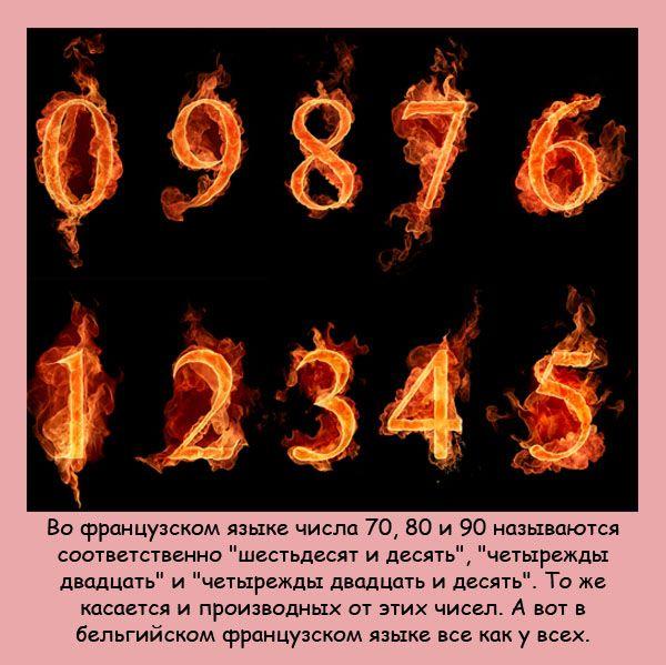 14 (600x599, 331Kb)