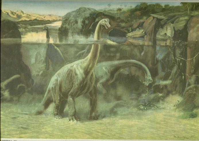 Брахиозавр (693x490, 127Kb)