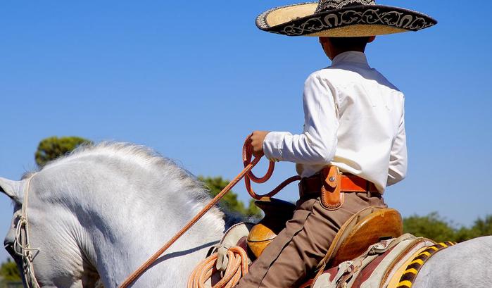 Путешествие в Мексику (6) (700x409, 335Kb)
