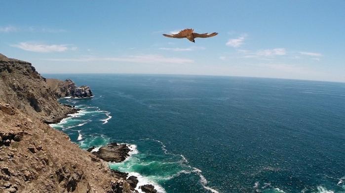 фотографии с высоты птичьего полета 17 (700x392, 273Kb)