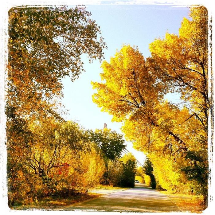 киев осень труханов остров велосипедные прогулки