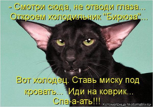 4a1811c9c68049e0a7b46dc538327310_101395 (600x420, 246Kb)