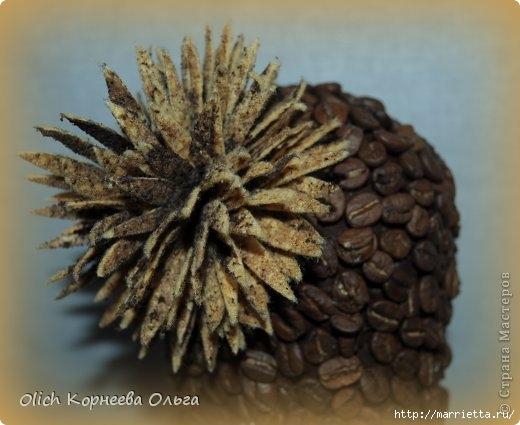 Цветущий кактус из кофейных зерен (9) (520x425, 113Kb)