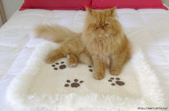 Коврик для кота с аппликацией крючком (1) (679x445, 142Kb)