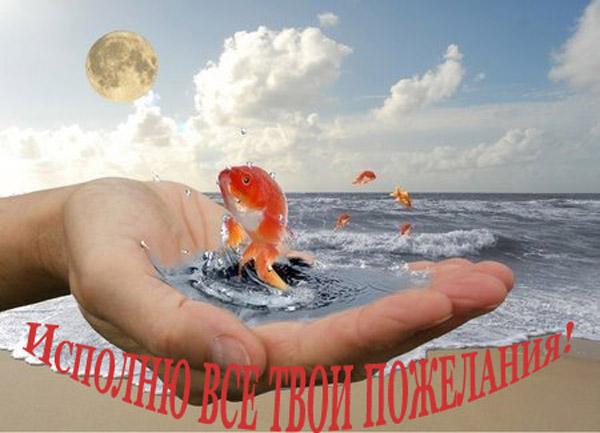 5053532_ribka_zolotaya_1 (450x325, 59Kb)/5053532_ribka_zolotaya_1R (600x433, 81Kb)