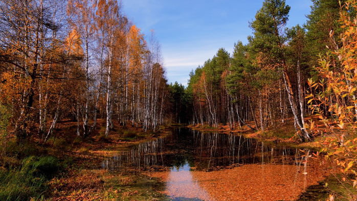 _Autumn_0052 (700x393, 473Kb)
