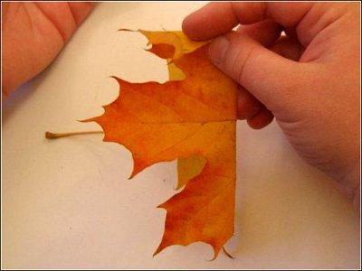 Розы из осенних листьев своими руками (9) (400x300, 83Kb)