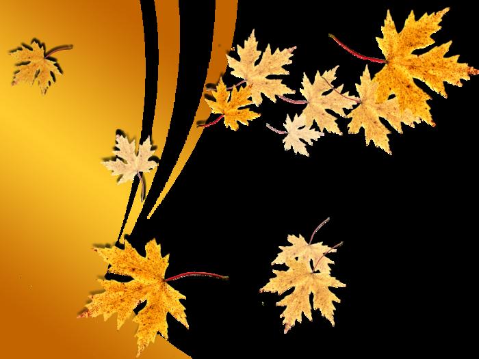 Листья фон