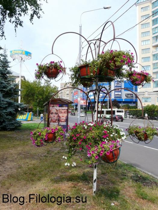 3241858_flowers12 (525x700, 336Kb)