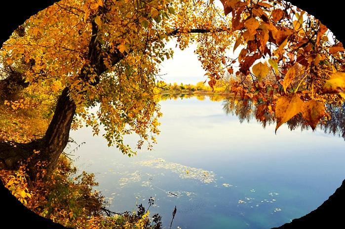 river-72317_640 (700x464, 723Kb)