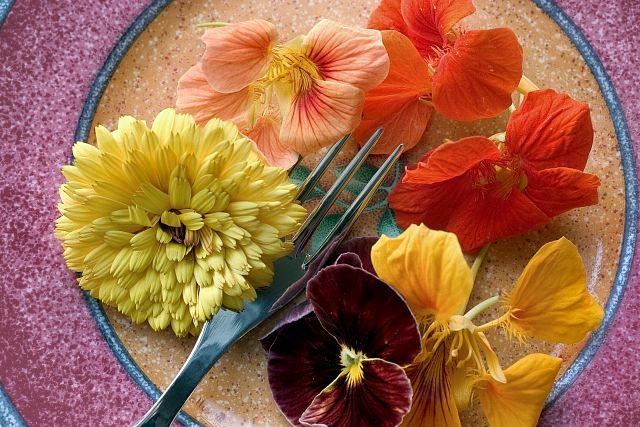 съедобные цветы 2 (640x427, 336Kb)