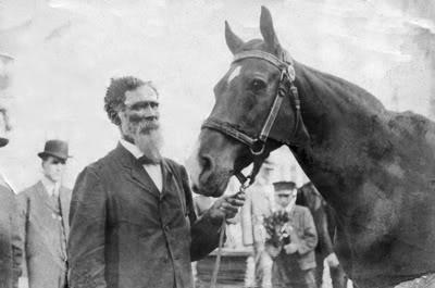 джим кей самая умная лошадь в истории 4 (400x265, 48Kb)