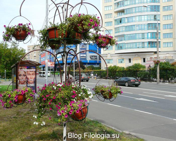 3241858_flowers13 (700x563, 106Kb)