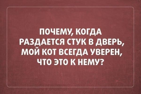 smeshnie_kartinki_141343539042 (600x400, 142Kb)