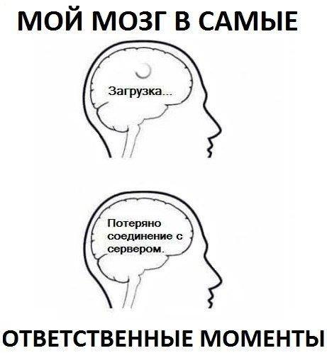 smeshnie_kartinki_141346791038 (461x498, 88Kb)