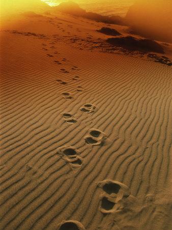 следы-на-песке (338x450, 47Kb)