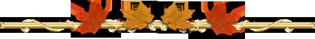 3906024_0_8f7e6_c8cebeec_L_2_ (450x57, 29Kb)