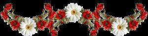 http://img1.liveinternet.ru/images/attach/c/11/117/453/117453957_RRRSSRRRRRR__1_.png