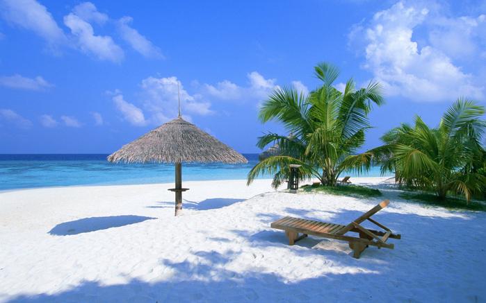 mandarin_maldives_004_1 (700x437, 359Kb)
