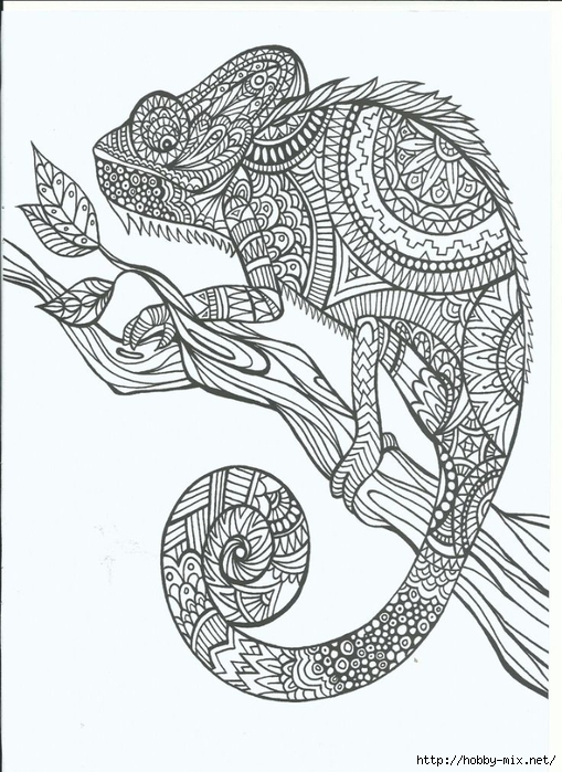 Animal Zentangle Coloring Pages : Free coloring pages of zentangle animals