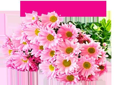 111639889_S_dnyom_rozhdeniya3 (400x300, 200Kb)