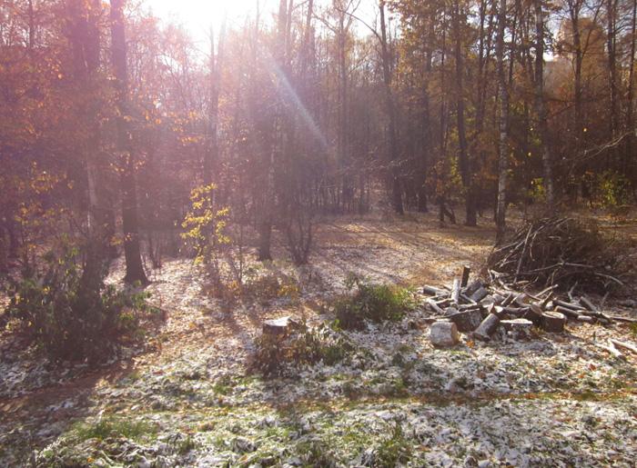 03 Осенний мороз (700x515, 465Kb)