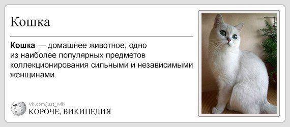 smeshnie_kartinki_14139689931 (570x250, 73Kb)