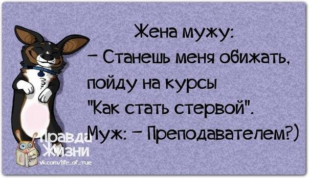 05 (604x349, 179Kb)